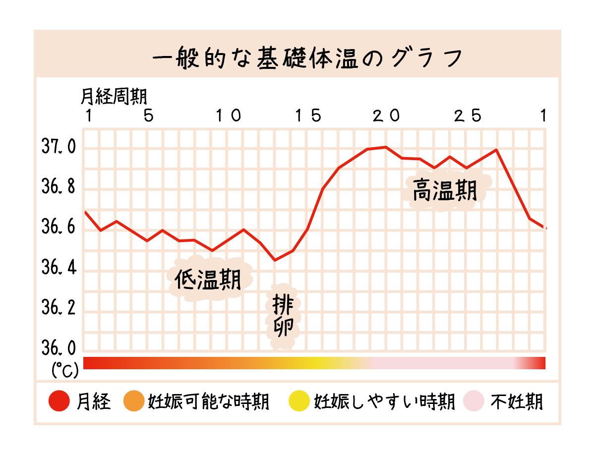 グラフ 日 排卵 体温 基礎